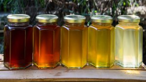 قیمت عسل انواع عسل خالص