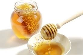 قیمت عسل خرید عسل وحشی