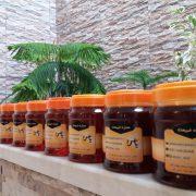 قیمت انواع عسل