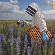 لباس زنبورداری فضایی