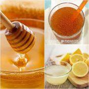 عرضه عمده عسل