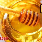 قیمت عسل خرید و فروش عسل طبیعی گشنیز