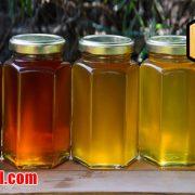 قیمت عسل طبیعی سال 97