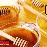 خرید عسل چندگیاه