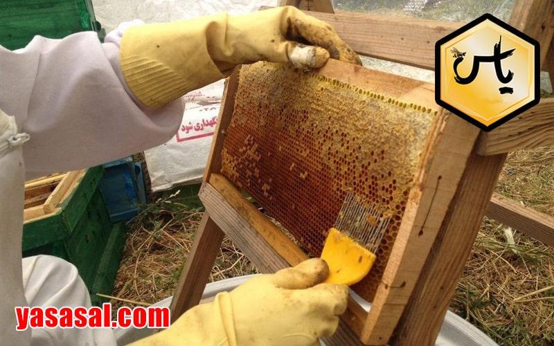 فروش بهترین عسل