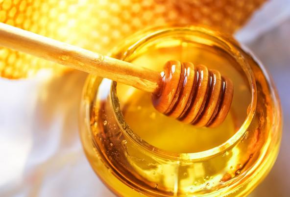 خرید عمده عسل چهل گیاه مرغوب