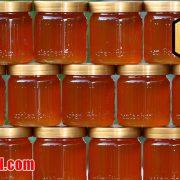 فروش پودر عسل